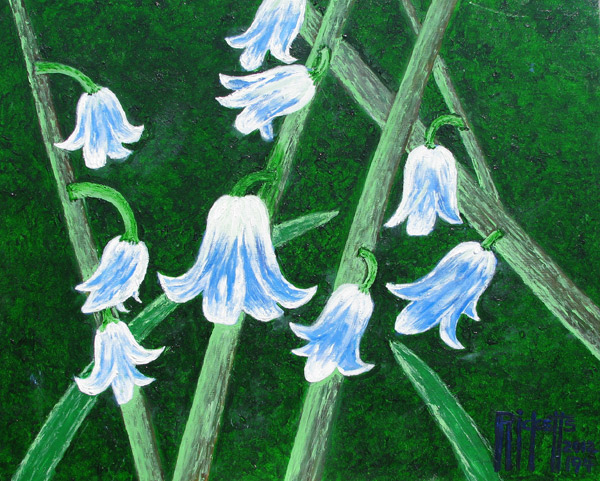 Blue Bells by Danny Ricketts