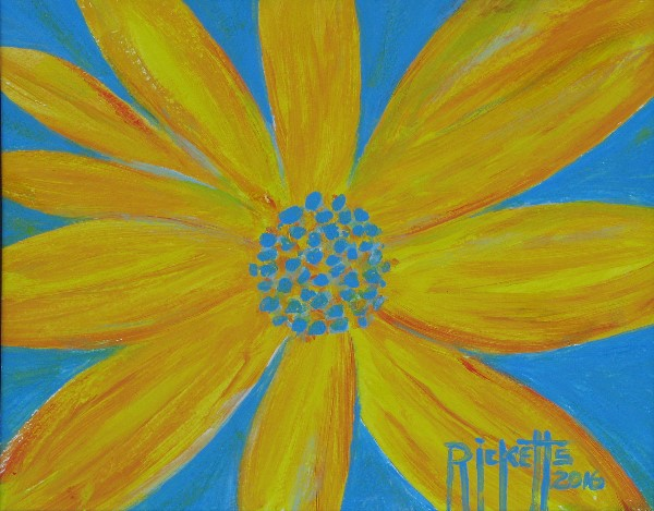 Yellow Flower on Blue © Danny Ricketts